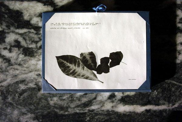 Clinamen #4. Package by L. Venizelou.